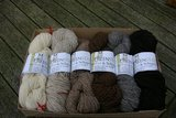 slankmakend vest van wol van shetlandschaap_